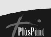 Pluspunt